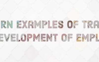 Modern Examples of Training and Development Programs for Employees in 2020
